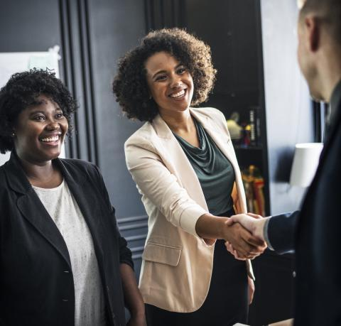 Picture of professional woman shaking hands
