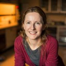 Headshot of Deirdre O'Carroll