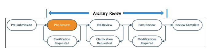 Picture of Ancillary Review Workflow